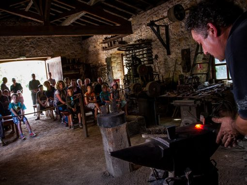 Show forge à martinet