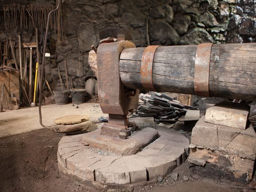 Forge a martinet unique en france